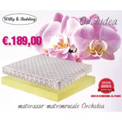 PACK ORCHIDEA